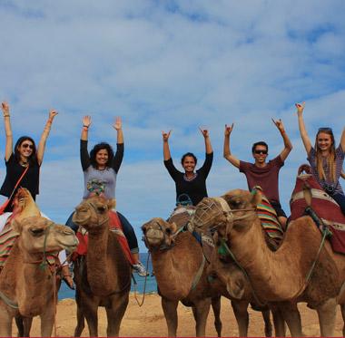 bg-academics-study-abroad