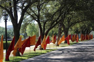 Homecoming Flags