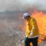Sneed Prairie Restoration