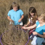 Counting species using a hula hoop as the sampling plot during Sneed Prairie Field Tripion activity with hula hoop as sample plot during Sneed Prairie Field Trip