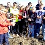 Restoring the prairie with native Blackland Prairie seeds