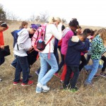 Children learn how bison impacted the prairie through a herding activity