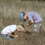 Boys in the tall grass at Sneed determining differing species of plants