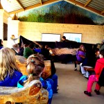 Classes see a life-sized image of switchgrass