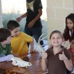Children examine prairie animal skulls