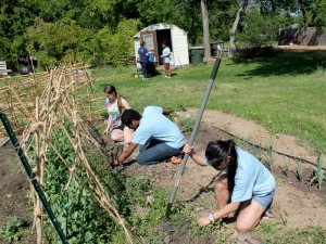 Sherman Community Garden
