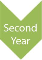 2nd Year - Four Year Plan