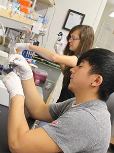 stem-research