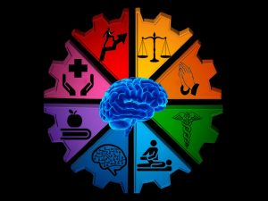 Psychology Hub