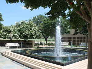 Honors Court & Collins Fountain
