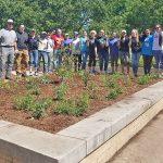 GreenServe 2018 Campus Planting