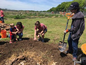 GreenServe 2018 – Planting melon Circles at Pottsboro Community Garden