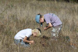 Sneed Prairie Field Trips